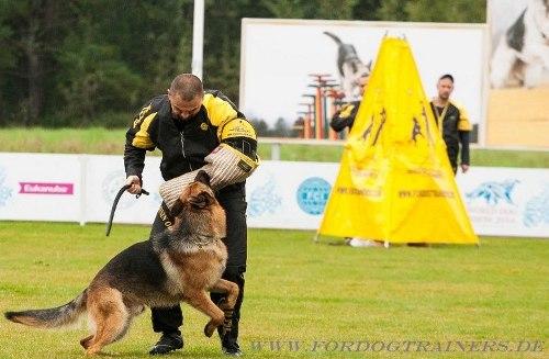 Hundeführer Versteck für Sport
