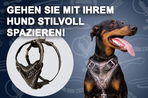 Artisan Hundehalsband Leder