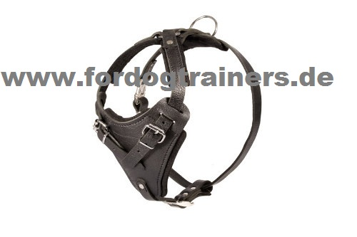 Padded