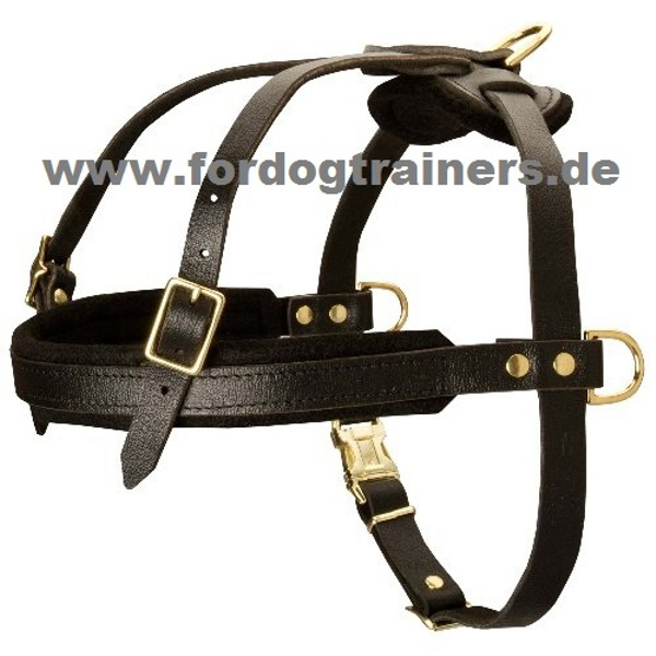 Pulling dog harness buy