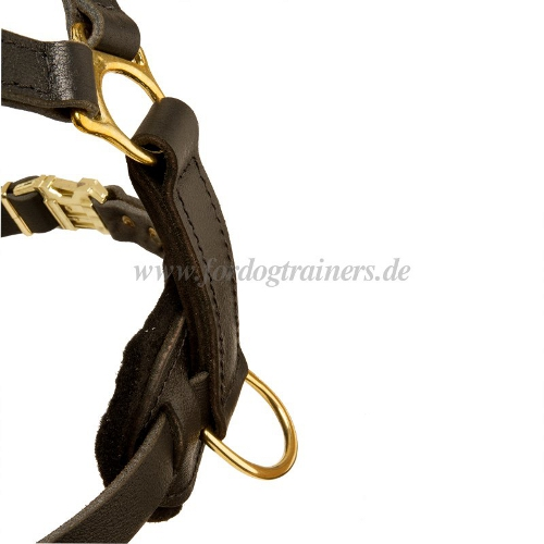Hundegeschirr Leder multifunktional