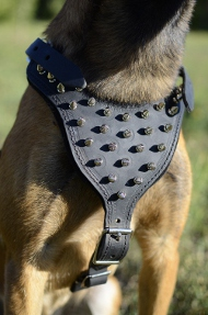 Dog Harness Leather for Malinois and Dogs with Super Spikes