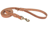 Upgraded Ultimate Dog Leash of Leather