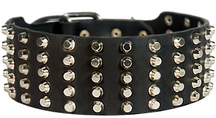 Inch Wide Leather Dog Collars