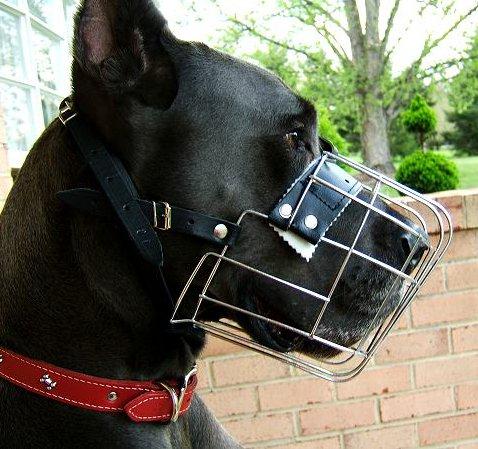 Drahtmaulkorb für große Hunde mit Schnalle