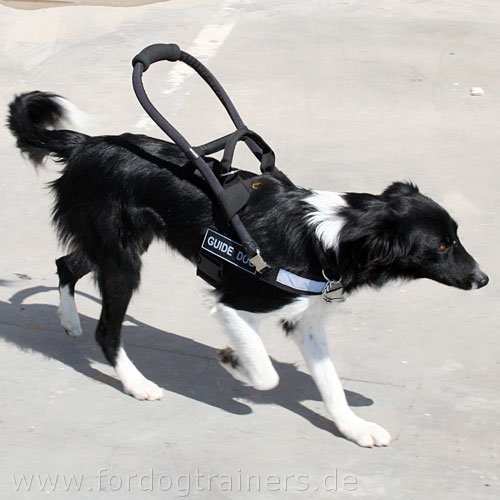 Blindenhunde Führgeschirr aus Nylon