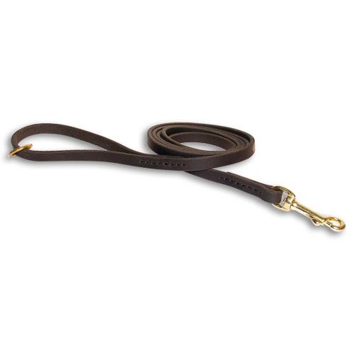Enge Hundeleine aus Leder mit Messing Ring am Griff