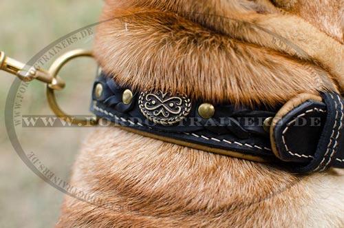 Luxus Lederhalsband für Hundetraining mit Nappa Polsterung