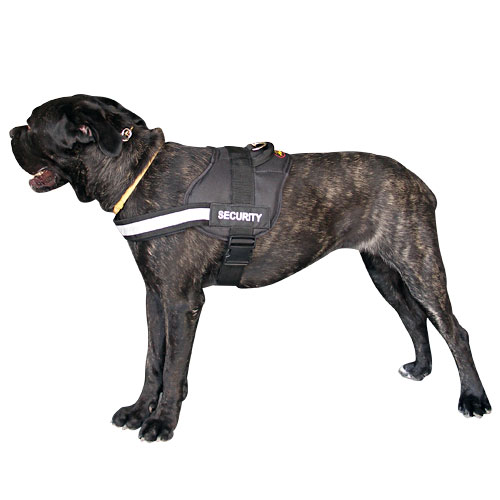 K9 Multitask Hundegeschirr aus Nylon
