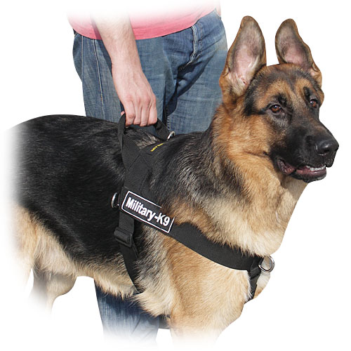 Extra Large Breed Dog Harness
