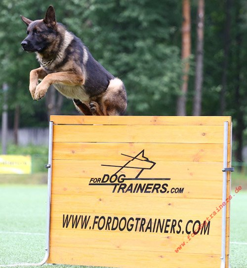 Hundesport Agility Hürde 1 m, Springhürde aus Holz