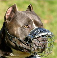 /images/pitbull-wire-muzzle-new-best-drahtmaulkorb.jpg